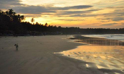 Zdjęcie INDIE / - / Goa / Poranek