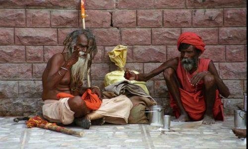Zdjecie INDIE / Rajastan / Jodhpur / Wędrowcy
