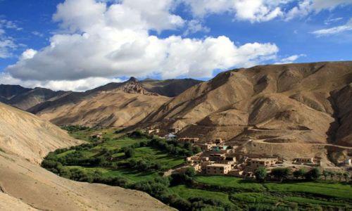 Zdjecie INDIE / Ladakh / Gdzieś przy drodze Kargil - Leh / Oaza