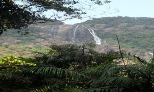 Zdjecie INDIE / Goa / Park narodowy Anshi / Wodospad Dudhsa