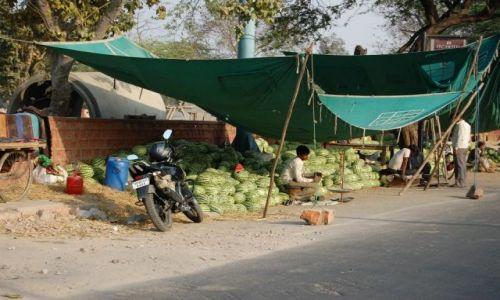 INDIE / Uttar Pradesh / Agra / Zapraszam na arbuza