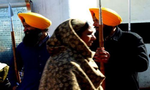 Zdjecie INDIE / - / Golden Temple Amritsar / STRAŻNICY  MORA