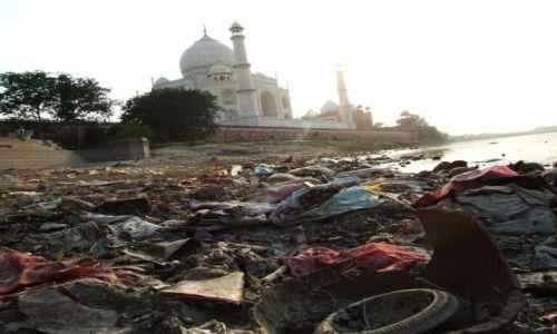 Zdjęcie INDIE / Agra / Taj Mahal / Tego jeszcze nie było!