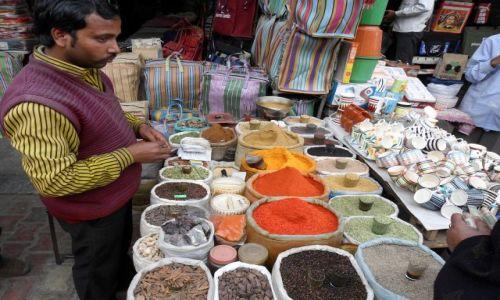 INDIE / Delhi / Delhi / Delhi, oferta przyprawowa