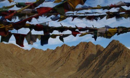 Zdjęcie INDIE / Ladakh / Leh / flagi modlitewne