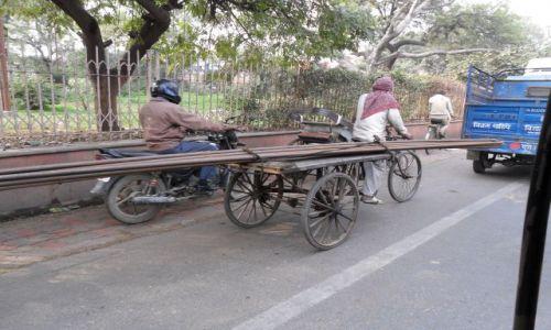 INDIE / Uttar Pradesh / Agra / Profesjonalny przewóz dłużycy
