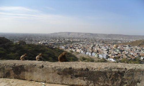 INDIE / Radżastan / Jaipur / Strażnicy Jaipuru