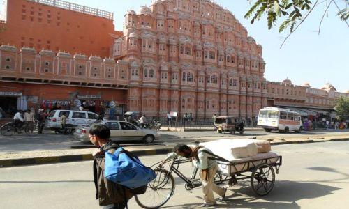 INDIE / Radżastan / Jaipur / Ciężko