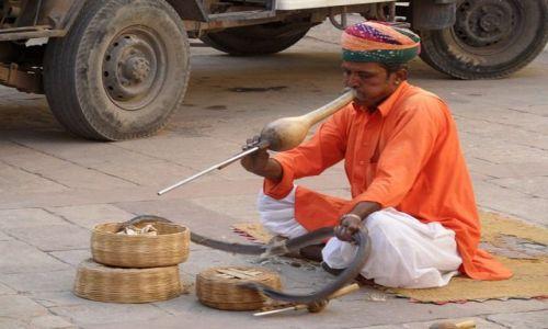 Zdjecie INDIE / Radżastan / Jaipur / Ludzie