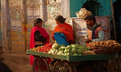 Zdjecie INDIE / - / na rynku / sprzedawca warzyw