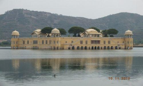 Zdjecie INDIE / Radzastan / Jaipur / Indie
