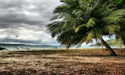 Zdjęcie INDIE / Andaman Islands / Jolly Buoy / pt