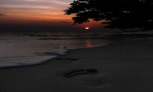 Zdjęcie INDIE / Andamany / Havelock / no.5