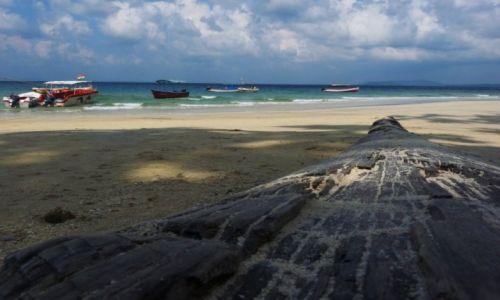 Zdjecie INDIE / Andamany  / Havelock / Plaża słoni