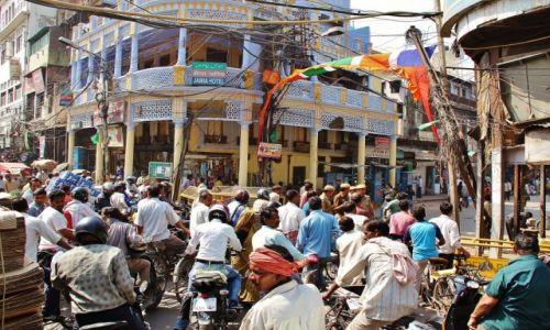 Zdjecie INDIE / - / Delhi / Ulica