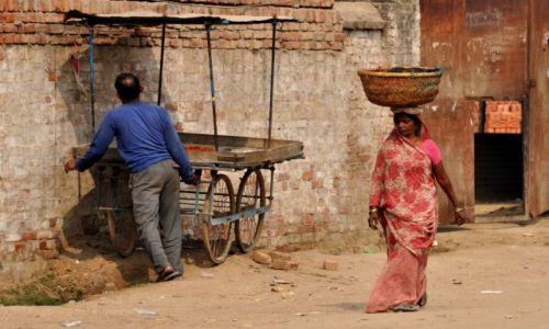 Zdjecie INDIE / - / Varanasi / Transport