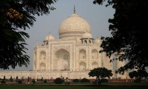 Zdjecie INDIE / UttarPradesh / Agra / Konkurs - Moje Indie - Taj Mahal