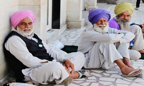 Zdjecie INDIE / - / Delhi / Sikhowie