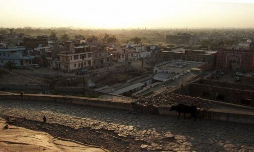 Zdjecie INDIE / Radżastan / Jaipur / Różowe miasto -Konkurs