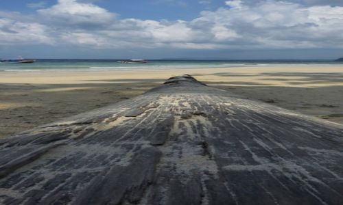 Zdjęcie INDIE / Andamany / Havelock / Havelock-Plaża słoni