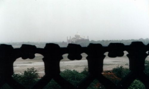 Zdjecie INDIE / Uttar Pradesh / Agra / Moje Indie - Ko