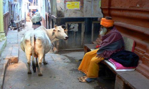 Zdjecie INDIE / Uttar Pradesh / Waranasi / Konkurs Indie