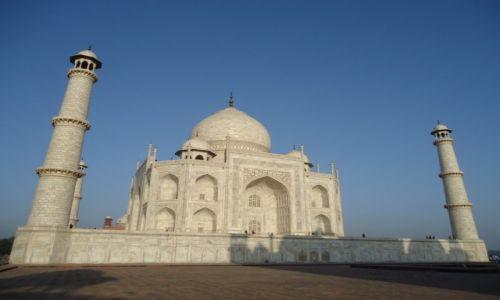 Zdjecie INDIE / Uttar Pradesh / Agra / Moje Indie - Konkurs