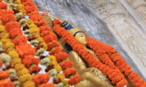 Zdjęcie INDIE / Bodhgaya / Bodhgaya / Indie