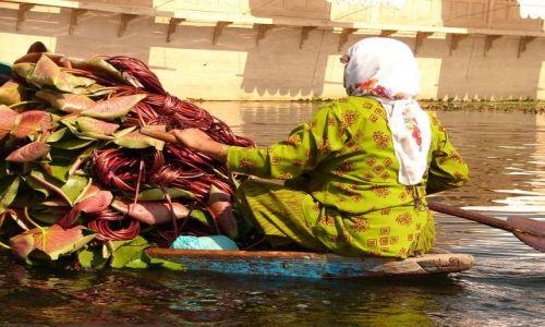 Zdjęcie INDIE / Kashmir - Srinagar / Jezioro Dal , Sikkara / transport na jeziorze Dal