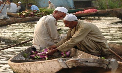 Zdjęcie INDIE / Kashmir - Srinagar / Jezioro Dal , Sikkara / na targu o świcie