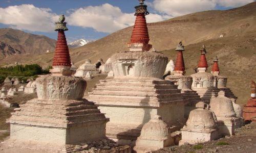 Zdjecie INDIE / Ladakh / Pałac królewski w Stok  / gompy w  Stok
