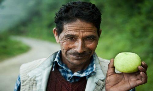 Zdjecie INDIE / Shimla / Shimla / Może jabuszko dla szanownego pana?