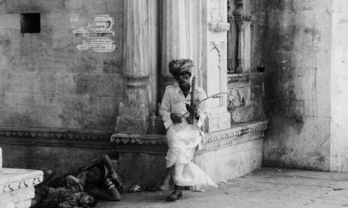 Zdjecie INDIE / - / udaipur / grajek uliczny