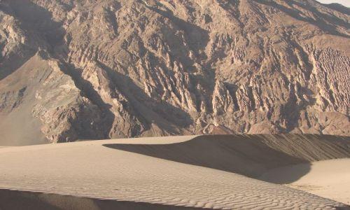 Zdjęcie INDIE / Kashmir -  / Ladakh -dolina Nubra / pustynia w dolinie Nubra