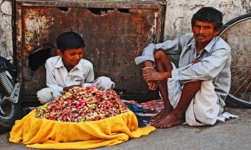 Zdjęcie INDIE / Radżastan / Udajpur / Ojciec przyucza syna do zawodu