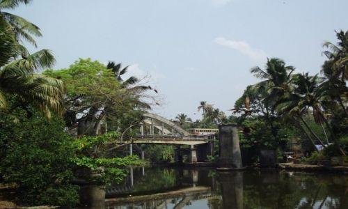 Zdjecie INDIE / Kerala / Rozlewiska Kerali / W drodze do Kochin