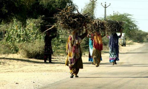 Zdjecie INDIE / Jaisalmer / pustynia / kobiety nie maja łatwo...
