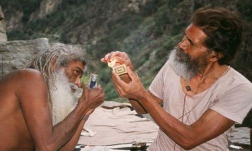Zdjecie INDIE / Stan Himachal Pradesh / Na północ od Rampur / Pora na drugie śniadanie