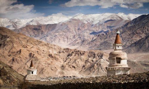 Zdjęcie INDIE / Ladakh / Ladakh / Himalaje