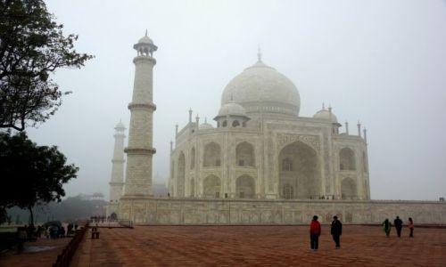 Zdjęcie INDIE / Taj Mahal -cudny / Agra / INDIE