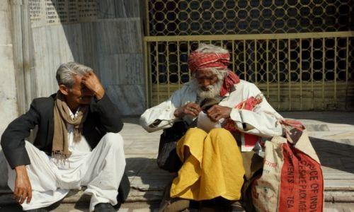 Zdjecie INDIE / - / Jaipur / Koledzy