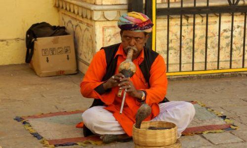 Zdjecie INDIE / - / Jaipur / INDIE