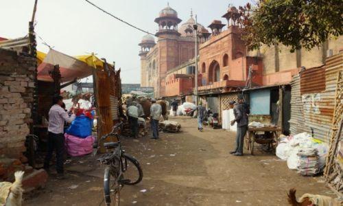 Zdjęcie INDIE / - / Agra / Życie