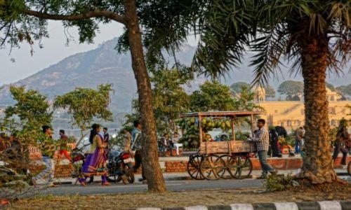 Zdjecie INDIE / - / Jaipur / Ulica