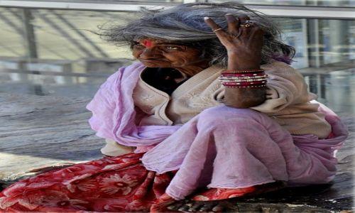 Zdjecie INDIE / - / Udaipur / W pogoni za marzeniami