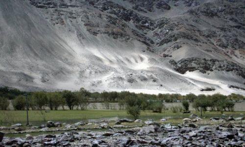 Zdjęcie INDIE / Himalaje / Dolina Nubry / Pustynna fantazja