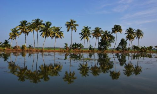 Zdjecie INDIE / Kerala / Kerala backwaters -Alappuzha / Odbicia