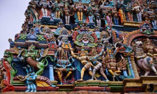 Zdjęcie INDIE / Tamilnadu / Maduraj / Kolory Indii