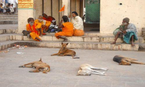 Zdjecie INDIE / Uttar Pradesh / Waranasi / Każdy ma swoje miejsce