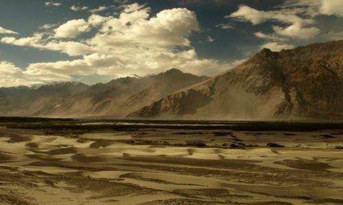 Zdjecie INDIE / Jammu i Kashmir / Ladakh, Hunder / Wydmy